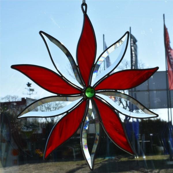 Blume groß rot
